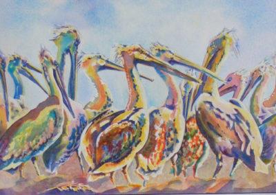 Pelican Parade